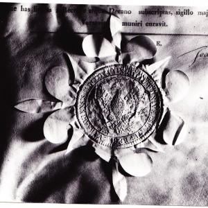 15 listopada 1817 zatwierdzono pieczęć uczelni, na której widniał orzeł w koronie z rozpostartymi skrzydłami, trzymający w lewym szponie gałązkę palmy, a w prawym lauru; odpowiednio – oznaki cierpliwej pracy i nagrody. Wokół orła umieszczono pięć gwiazd, symbolizujących pięć pierwszych wydziałów Uniwersytetu. Niebawem orzeł stał się godłem Uniwersytetu Warszawskiego. Na ilustracji: Godło uczelni na pieczęci pochodzącej z około 1820 r.