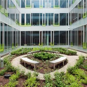 Wewnątrz budynku wydziałów lingwistycznych znajduje się dziedziniec, zaprojektowany na wzór średniowiecznych ogrodów geometrycznych. Rośnie tam ponad 300 krzewów liściastych, irgi błyszczące, tawuły japońskie, bluszcz oraz tuzin cisów. Fot. M. Kaźmierczak