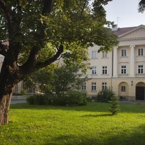 Klon jawor stojący przed Wydziałem Polonistyki to jedno z największych uniwersyteckich drzew. Mierzy 22 metry, a w obwodzie ma 85 cm. Fot. M. Kaźmierczak