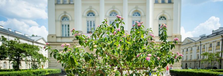 Skwer przed tym budynkiem wypełniają różnokolorowe rośliny, ozdobne drzewa i krzewy. 90% roślin, które zdobią uniwersyteckie rabatki, to uczelniana produkcja. W szklarni znajdującej się nieopodal Gmachu Audytoryjnego sadzone są bratki, mrozy, szałwie czy bluszcze. Fot. M. Kaźmierczak