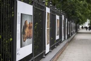 Wystawa fotografii naukowej w galerii plenerowej Łazienek Królewskich