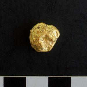 Grudka złota znaleziona w czasie wykopalisk w Novae. Fot. M. Lemke.