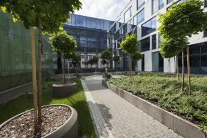 Centrum Nauk Biologiczno-Chemicznych.