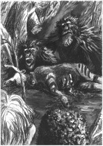 Wyobrażenie szympansów napotkanych w 1989 r. przez dr. Johna Harta w lesie Ituri. Rys. dr T. C. Hicks