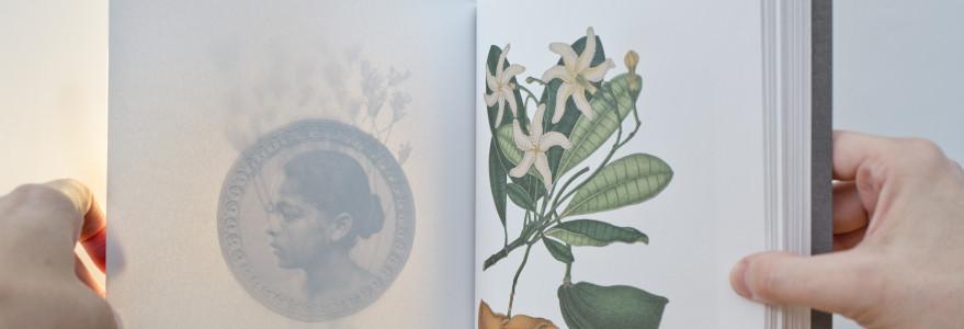 """Publikacja """"Tropicale"""". Fot. Ł. Gniadek, K. Jędrzejewska-Szmek"""