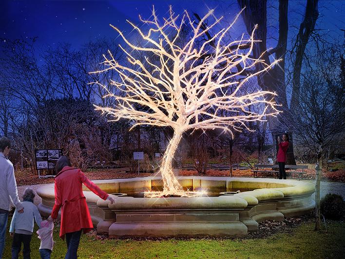 Projekt iluminacji Ogrodu Botanicznego UW, źródło: OB UW.